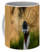East African Crowned Crane Square Format Coffee Mug