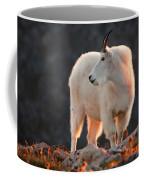 East Of Evening Coffee Mug