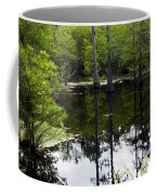 East Texas Cyprus Pond Coffee Mug