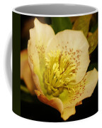 Easter Bloom 2014 Coffee Mug