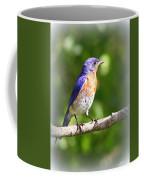Eastern Bluebird - After His Bath Coffee Mug