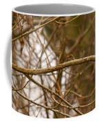 Eastern Bluebird Pair Coffee Mug