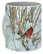Eastern Cardinal - Cardinalis Cardinalis Coffee Mug