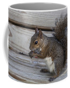 Eastern Gray Squirrel-4 Coffee Mug
