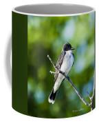 Eastern Kindbird  Coffee Mug