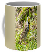 Eastern Meadowlark Coffee Mug