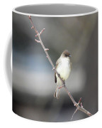 Eastern Phoebe Coffee Mug