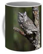 Eastern Screech-owl Otus Asio Coffee Mug