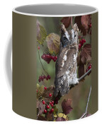 Eastern Screech Owl Red And Gray Phases Coffee Mug