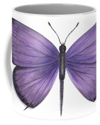 Eastern Tailed Blue Butterfly Coffee Mug by Anonymous