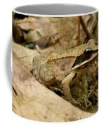 Eastern Wood Frog Coffee Mug