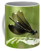 Ebony Jewelwing Fluttering For Male Coffee Mug