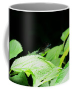 Ebony Jewelwing Male Coffee Mug