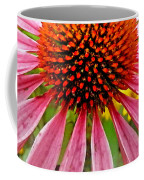 Echinacea Flower Upclose Filtered Coffee Mug