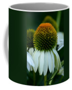 Echinacea Gold II Coffee Mug