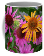 Echinacea Mango Meadowbrite Coffee Mug