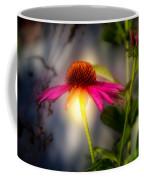 Echinacea Sunrise Coffee Mug