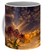 Echinacea Sunset Coffee Mug by Bob Orsillo
