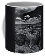Echo Park From The Ridge Black And White Coffee Mug