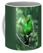 Eclectus Parrot-1 Coffee Mug