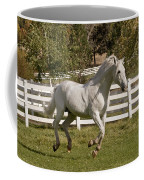 Effortless Gait Coffee Mug