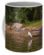 Egret In Central Park Coffee Mug