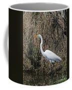 Egret In Marsh In Display  Coffee Mug