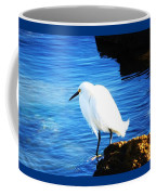 An Egret In St. Augustine Coffee Mug