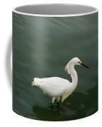 Egret In Water Coffee Mug