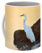 Egret On Dunedin Causeway Coffee Mug