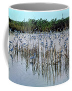 149838-egrets Feeding, Everglades Nat Park  Coffee Mug