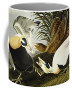 Eider Ducks Coffee Mug