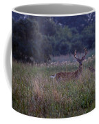 Eight Point Velvet Coffee Mug