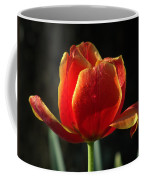Elegance Of Spring Coffee Mug
