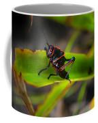 Elegant Sylvan Katydid Coffee Mug