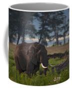 Elephant   #0134 Coffee Mug