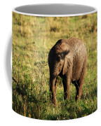 Elephant Calf Coffee Mug