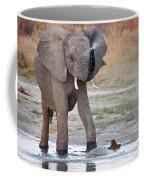 Elephant Calf Spraying Water Coffee Mug
