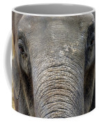 Elephant Close Up 1 Coffee Mug