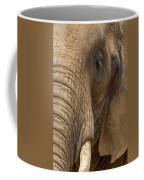 Elephant Close Up Coffee Mug