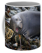 Elephant Seal Of Ano Nuevo State Reserve Coffee Mug