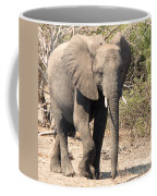 Elephant Stroll Coffee Mug