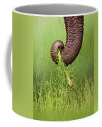Elephant Trunk Pulling Grass Coffee Mug