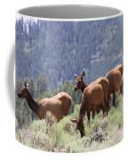 Elk Family - Yellowstone N P Coffee Mug
