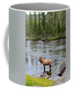 Elk Stag In The Madison River Of Yellowstone National Park Coffee Mug