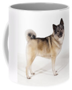 Elkhound Dog Coffee Mug