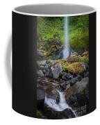 Elowah Falls Coffee Mug