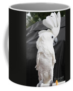 Elvis The Cockatoo II The Profile Shot Coffee Mug