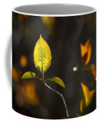 Emerging From The Darkness Coffee Mug