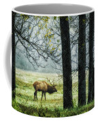 Emerging From The Fog Coffee Mug by Priscilla Burgers